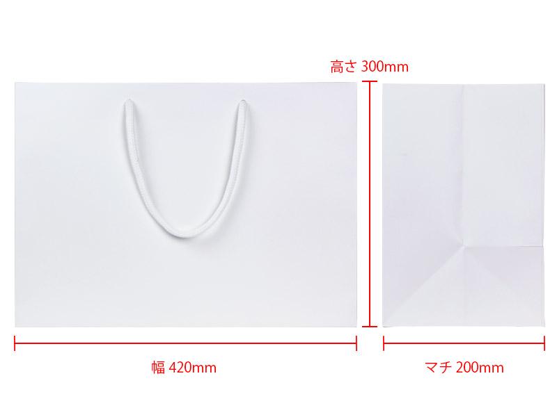 幅420×高300×マチ200mm